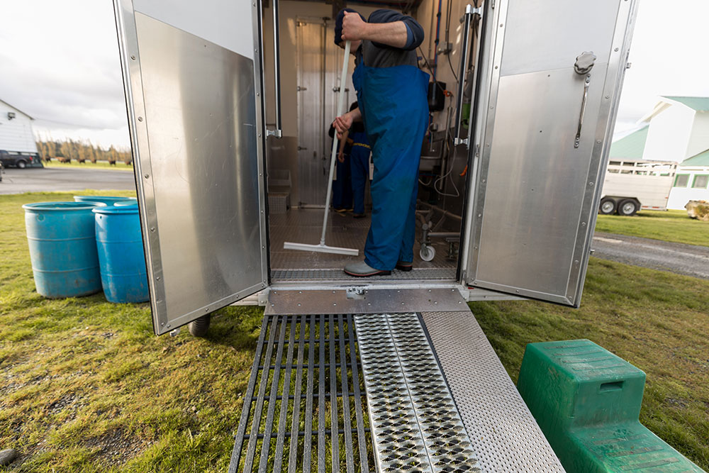 Butcher cleaning USDA-compliant mobile slaughterhouse using squeegee, built-in floor drains